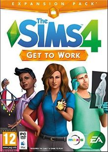 De Sims™ 4 Aan het Werk cheap key to download