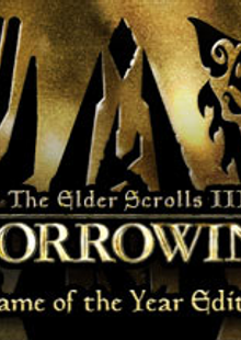 The Elder Scrolls III Morrowind Game of the Year Edition PC cheap key to download