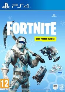 Fortnite Deep Freeze Bundle PS4 cheap key to download