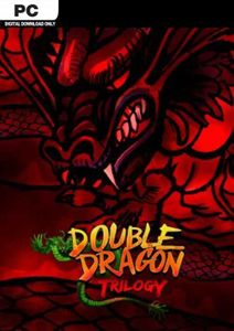 Double Dragon Trilogy PC