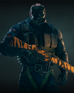 Tom Clancy's Rainbow Six Siege PC - Gold Weapons Skin Pack DLC