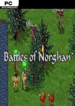 Battles of Norghan PC