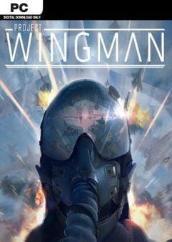 Project Wingman PC