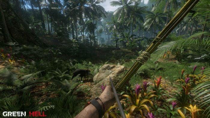 Green Hell screenshot 2