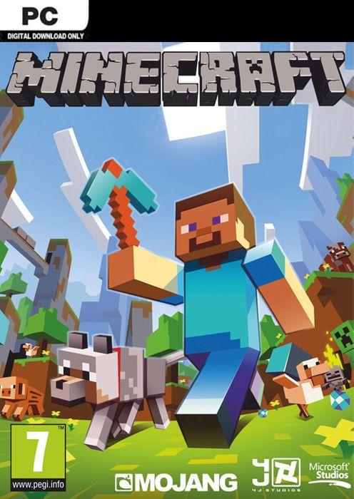 Minecraft hoesje