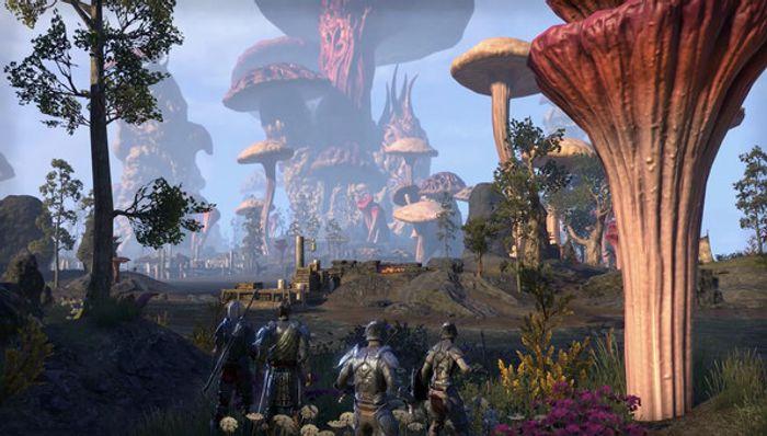 The Elder Scrolls Online: Morrowind (Game + Uitbreiding) screenshot 3