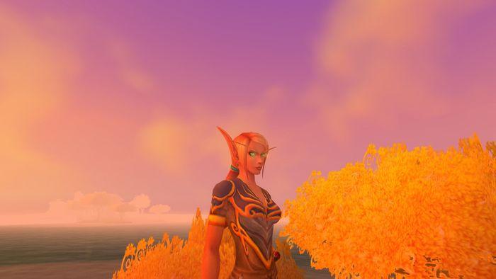 World of Warcraft: 60 Days Card screenshot 2