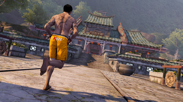 Sleeping Dogs: Definitive Edition PC cheap key to download