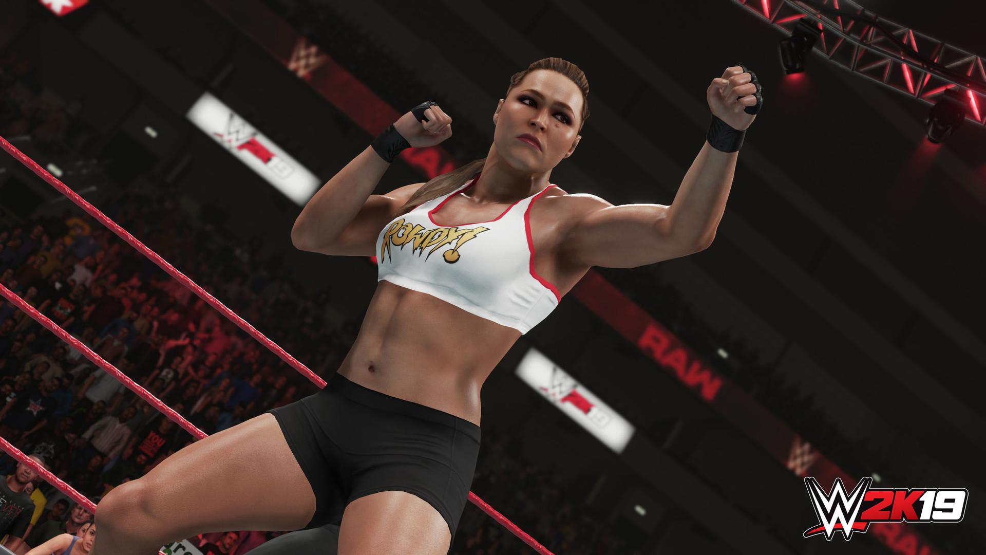 WWE 2K19 PC (EU) cheap key to download